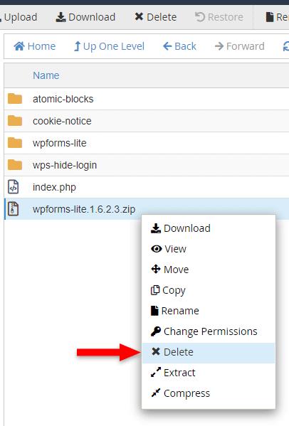 delete zip file cpanel