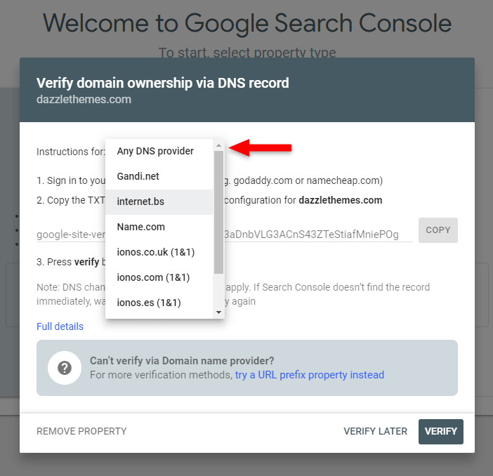 google search console dns provider instructions