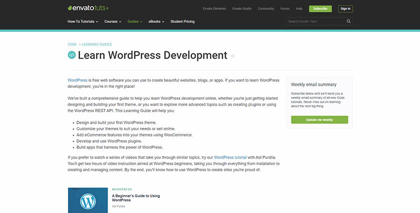 envato tuts+ wordpress development