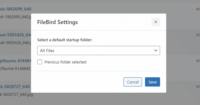 filebird settings