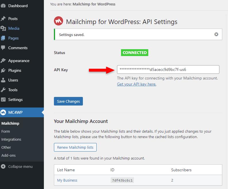 paste mailchimp api key in plugin